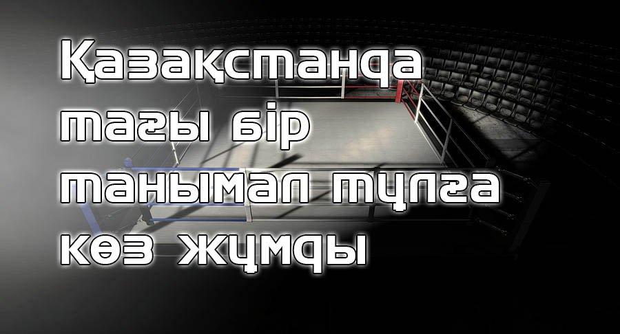 8 boxing ring corner lit allan swart 1